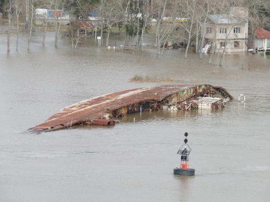 bateau dans rio parana