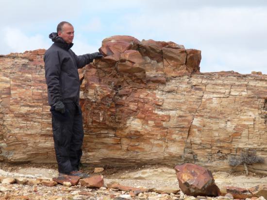 thierry et un fossile
