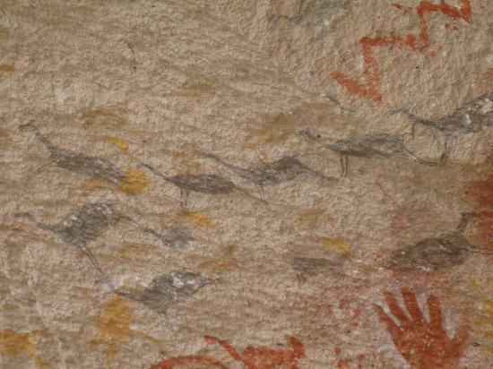 représentation de guanacos
