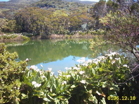 piton de l'eau région du volcan