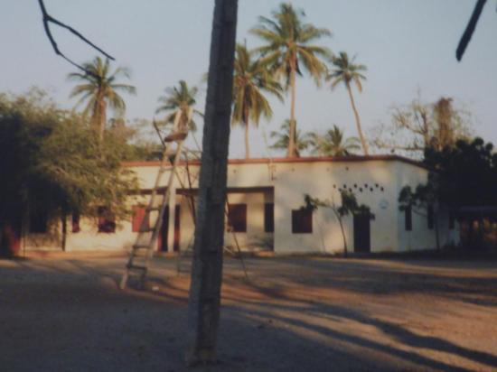 l'Ecole