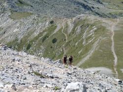 montagne-14-aout-5.jpg
